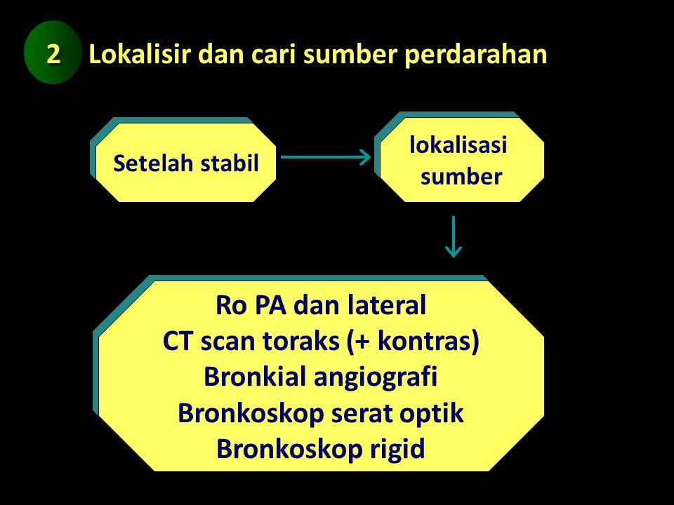 CT scan toraks (+ kontras) Bronkoskop serat optik