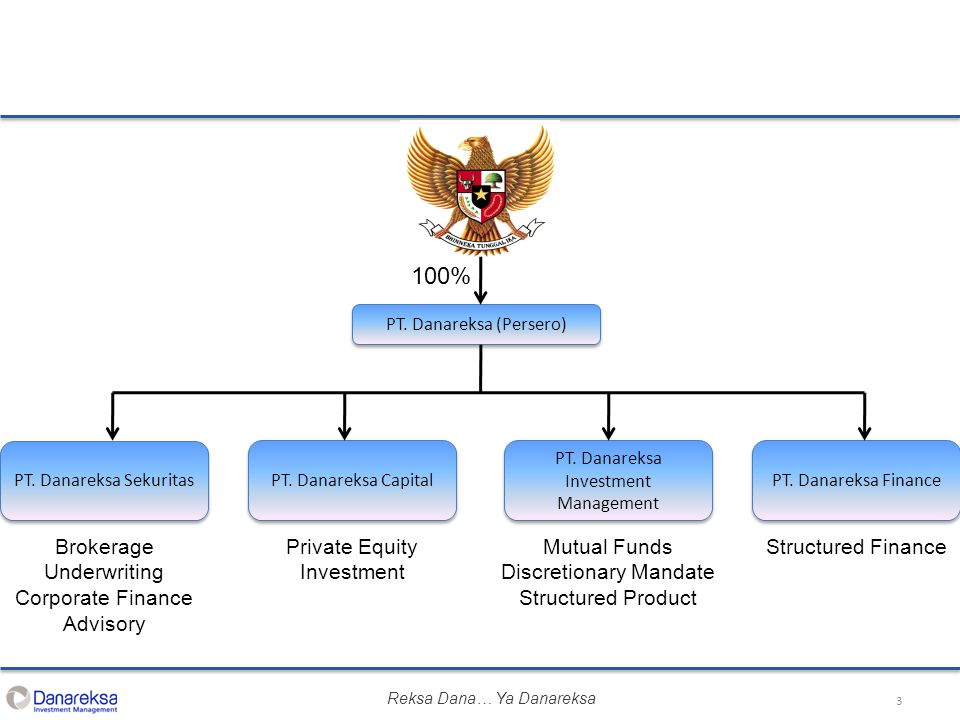 100% Private Equity Investment Mutual Funds Discretionary Mandate