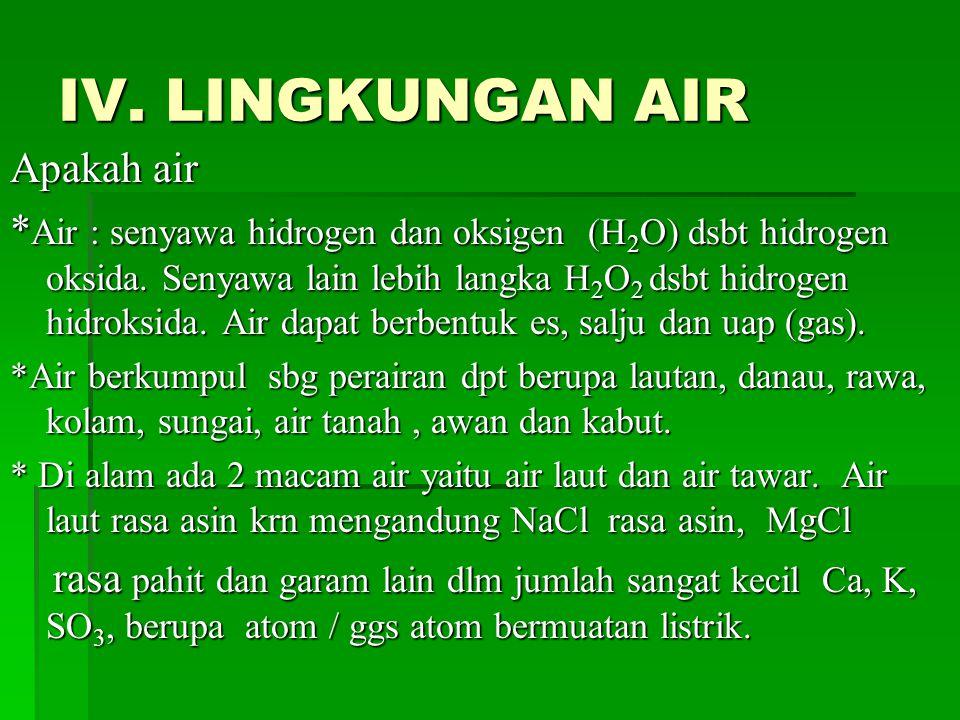 IV. LINGKUNGAN AIR Apakah air