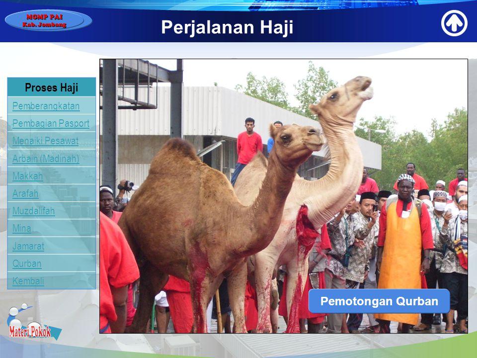 Materi Pokok Perjalanan Haji Proses Haji Pemotongan Qurban