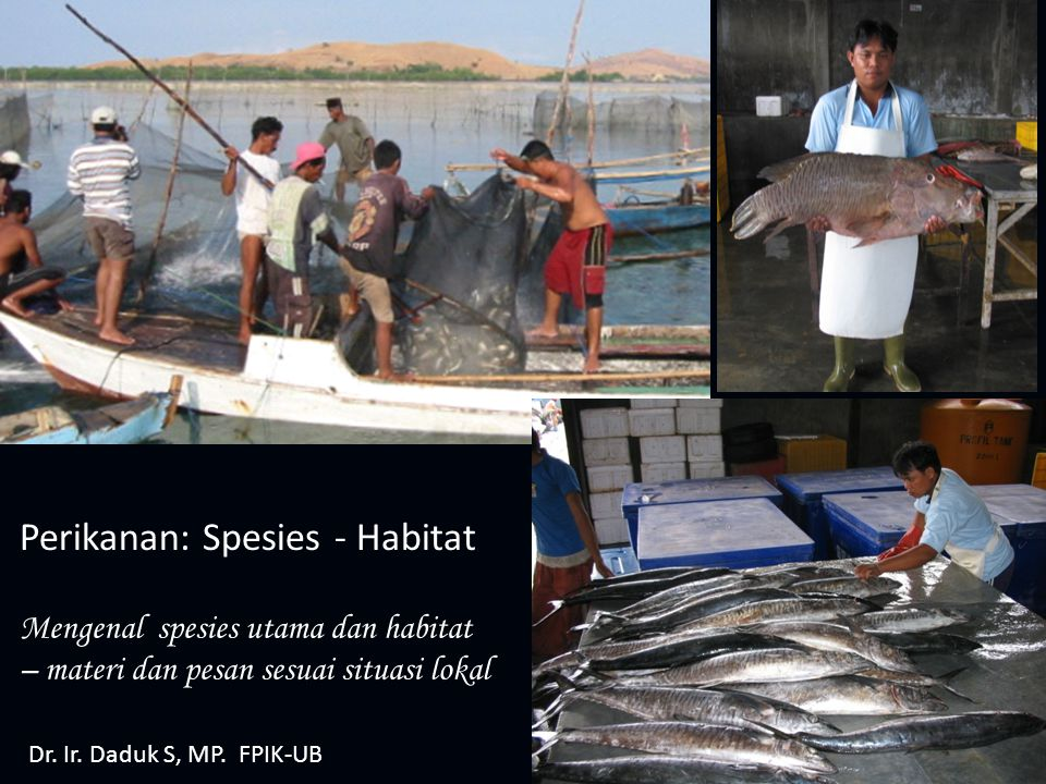 Perikanan: Spesies - Habitat