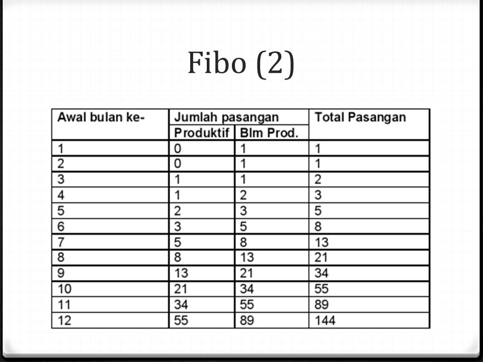 Fibo (2)