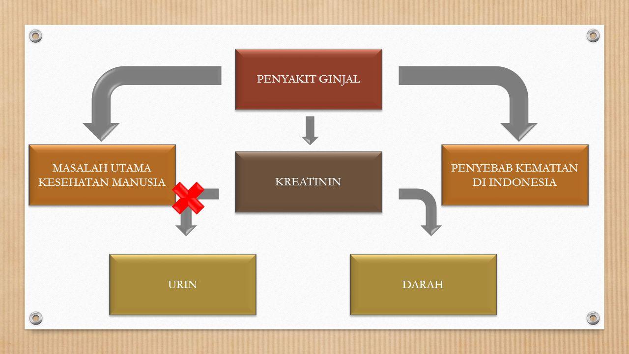 PENYEBAB KEMATIAN DI INDONESIA