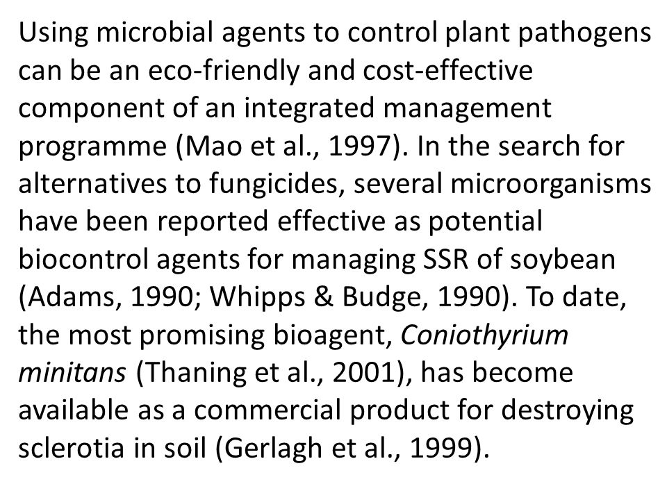 Using microbial agents to control plant pathogens can be an eco-friendly and cost-effective component of an integrated management programme (Mao et al., 1997).