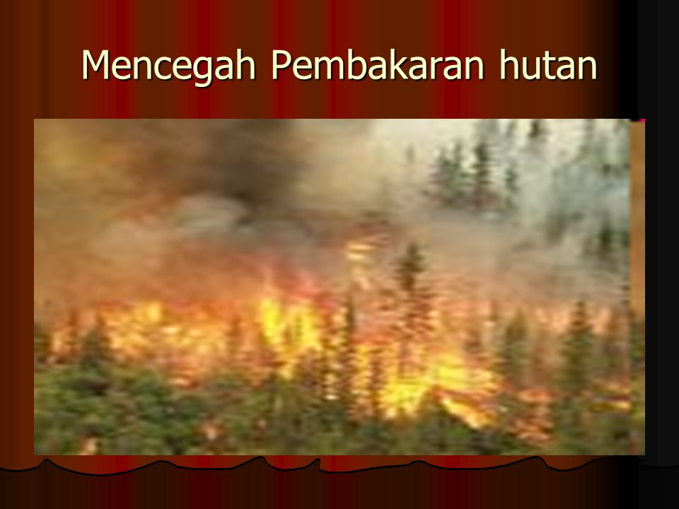 Mencegah Pembakaran hutan
