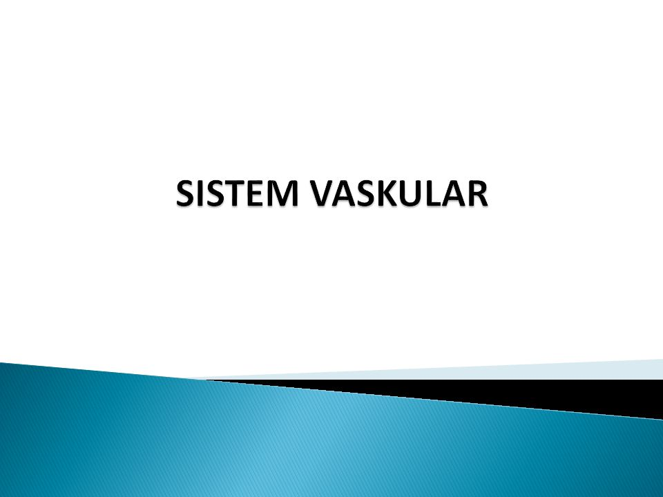 SISTEM VASKULAR