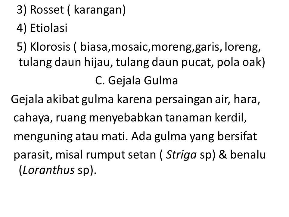 3) Rosset ( karangan) 4) Etiolasi 5) Klorosis ( biasa,mosaic,moreng,garis, loreng, tulang daun hijau, tulang daun pucat, pola oak) C.