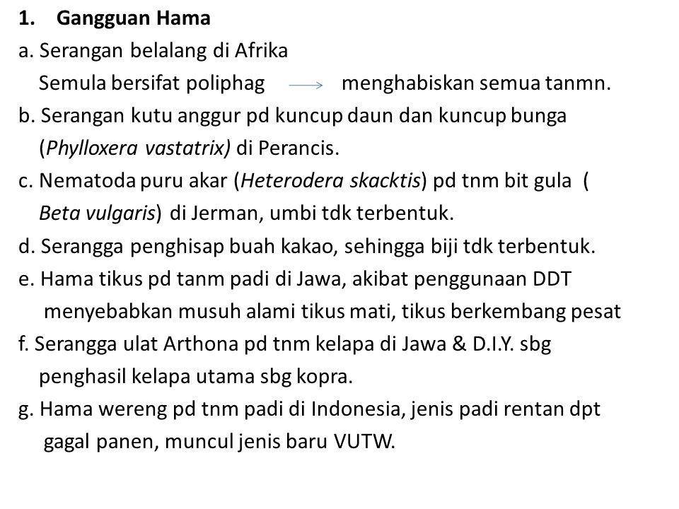 Gangguan Hama a. Serangan belalang di Afrika. Semula bersifat poliphag menghabiskan semua tanmn.