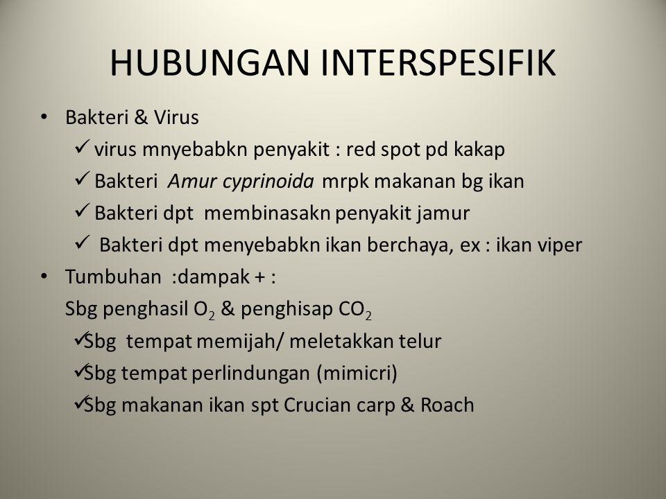 HUBUNGAN INTERSPESIFIK