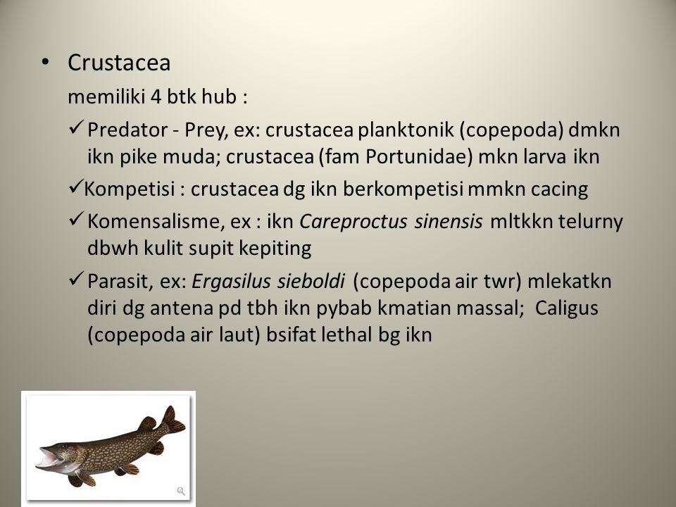 Crustacea memiliki 4 btk hub :