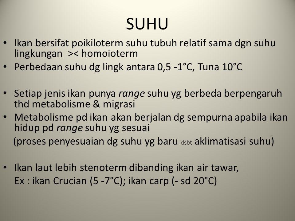 SUHU Ikan bersifat poikiloterm suhu tubuh relatif sama dgn suhu lingkungan >< homoioterm. Perbedaan suhu dg lingk antara 0,5 -1°C, Tuna 10°C.