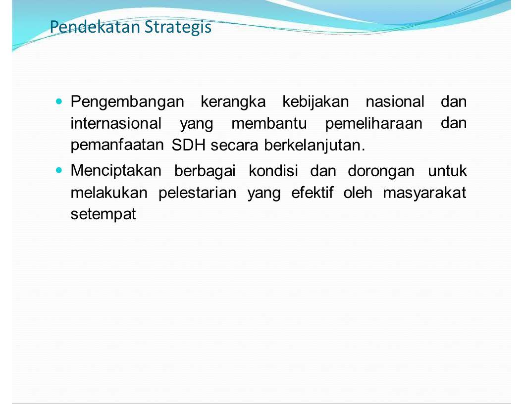 Pendekatan Strategis kerangka kebijakan nasional dan internasional