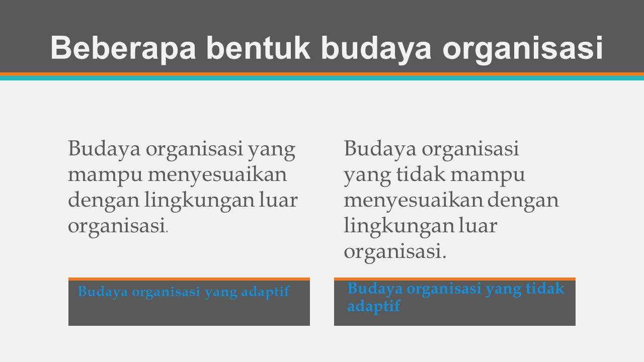 Beberapa bentuk budaya organisasi