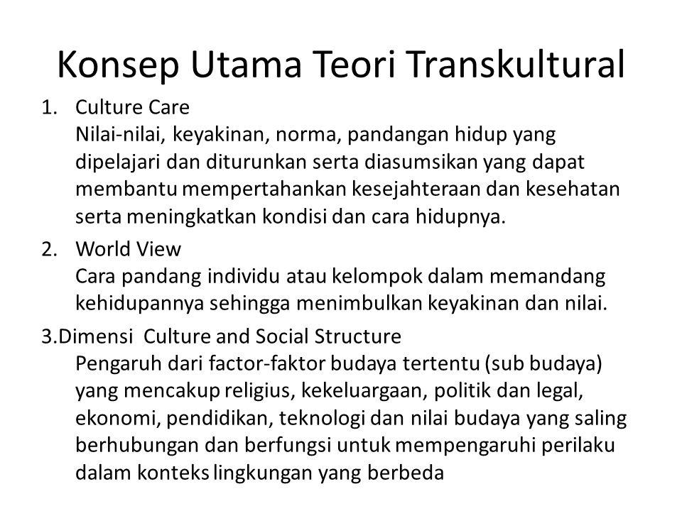 Konsep Utama Teori Transkultural