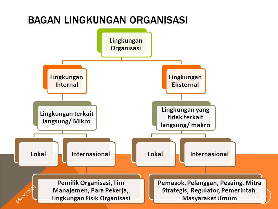 Bagan lingkungan organisasi