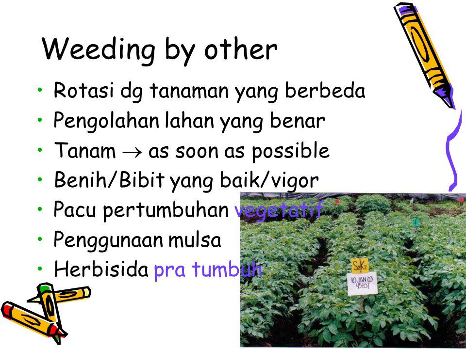 Weeding by other Rotasi dg tanaman yang berbeda