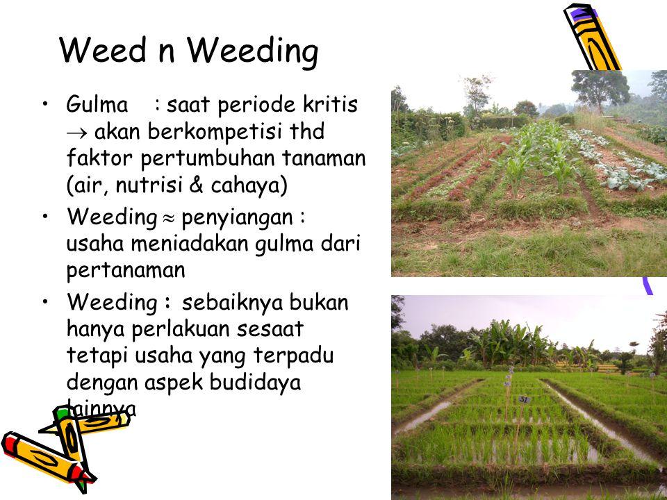 Weed n Weeding Gulma : saat periode kritis  akan berkompetisi thd faktor pertumbuhan tanaman (air, nutrisi & cahaya)