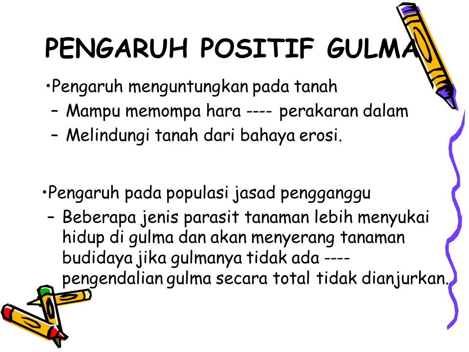 PENGARUH POSITIF GULMA