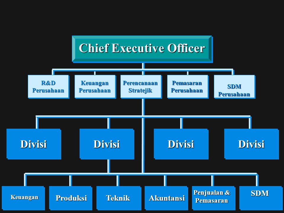 Chief Executive Officer Perencanaan Stratejik