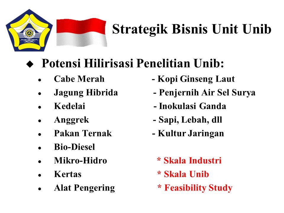 Strategik Bisnis Unit Unib