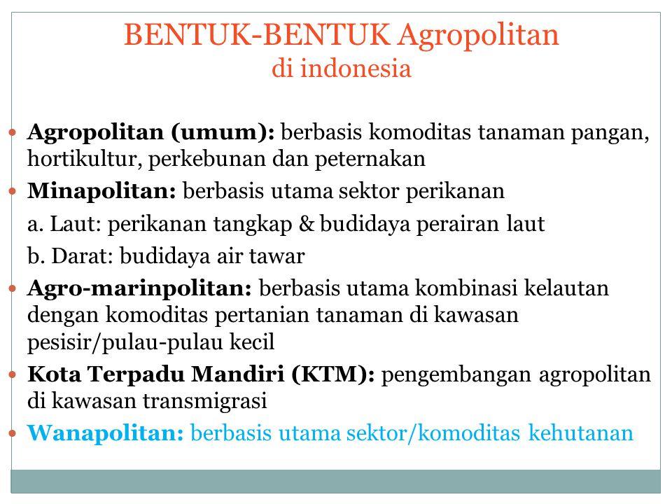 BENTUK-BENTUK Agropolitan di indonesia