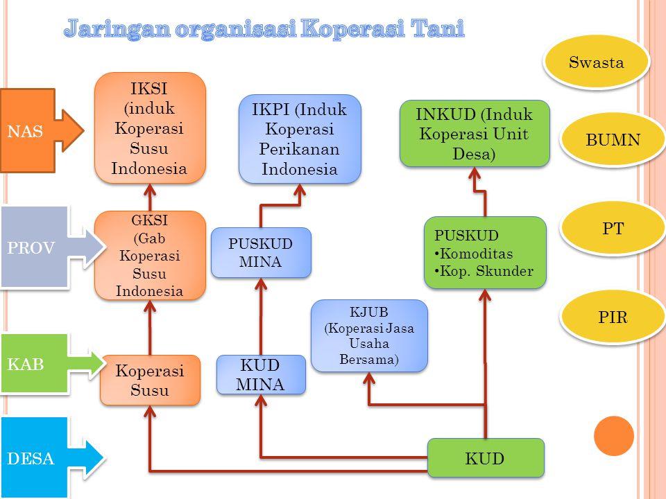 Jaringan organisasi Koperasi Tani