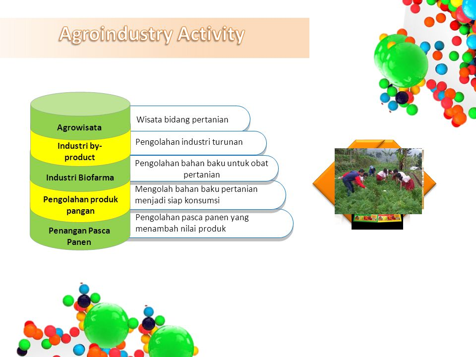 Agroindustry Activity
