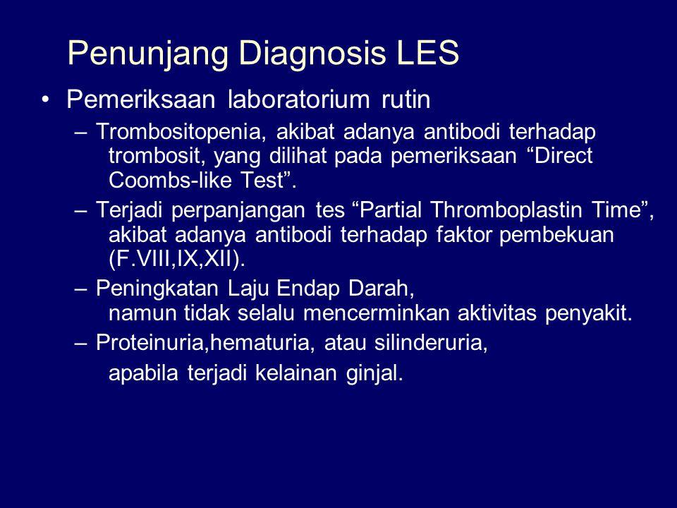 Penunjang Diagnosis LES