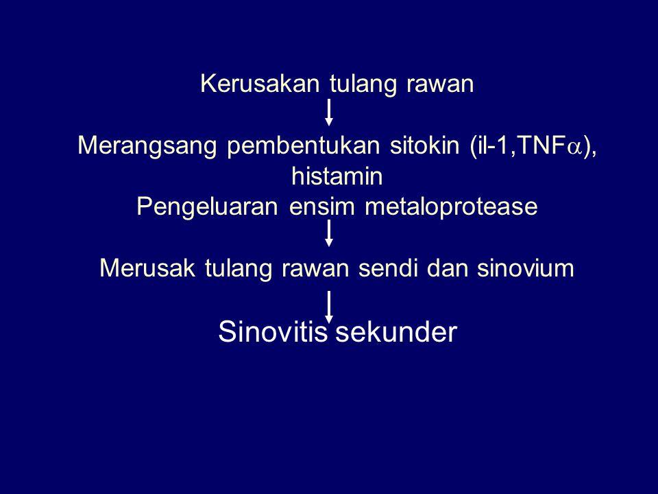 Sinovitis sekunder Kerusakan tulang rawan