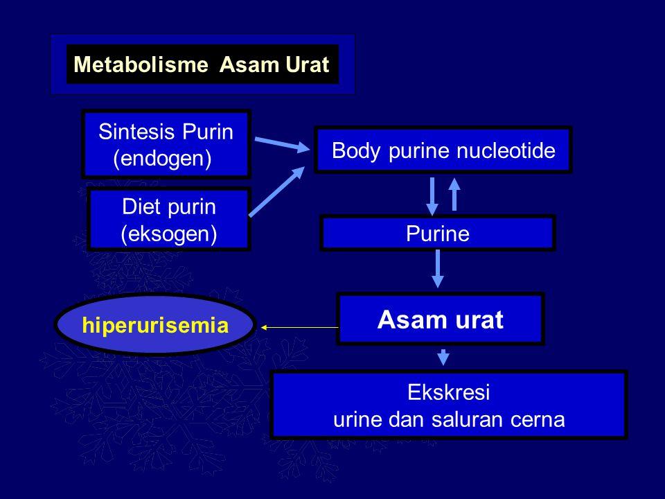 Asam urat Metabolisme Asam Urat Sintesis Purin (endogen)