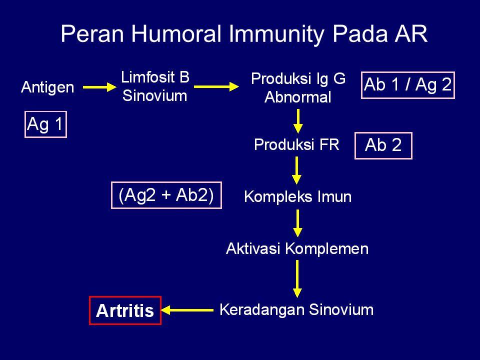 Peran Humoral Immunity Pada AR