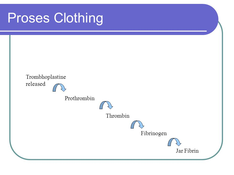 Proses Clothing Trombhoplastine released Prothrombin Thrombin