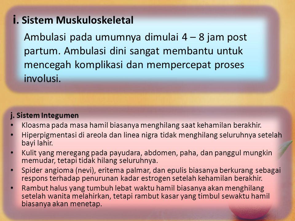 i. Sistem Muskuloskeletal