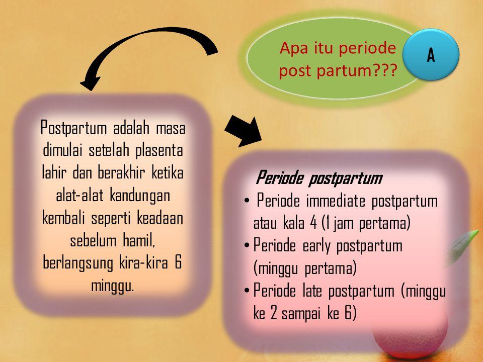 Apa itu periode post partum