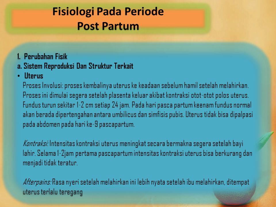 Fisiologi Pada Periode Post Partum