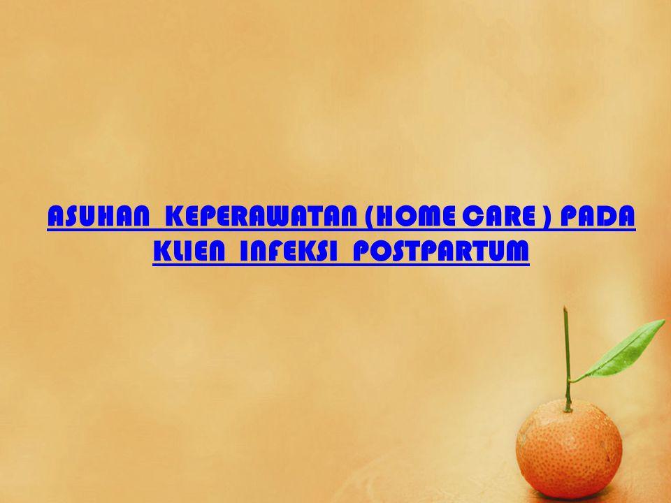 ASUHAN KEPERAWATAN (HOME CARE ) PADA KLIEN INFEKSI POSTPARTUM