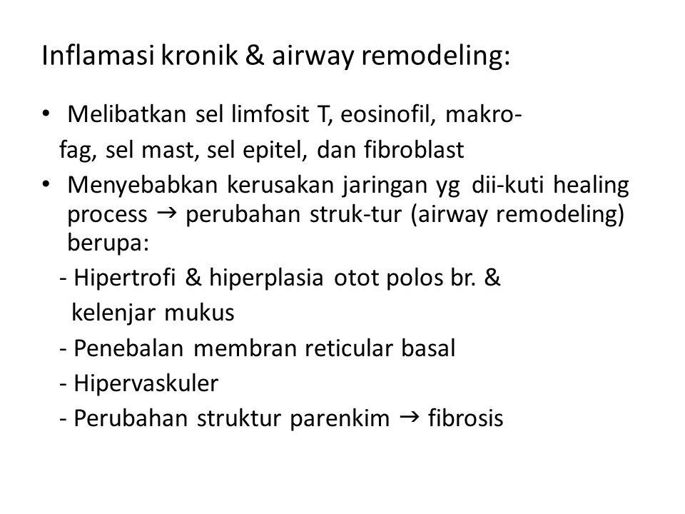Inflamasi kronik & airway remodeling: