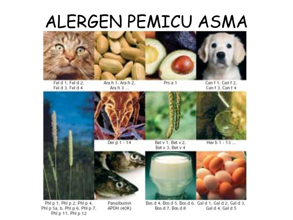 ALERGEN PEMICU ASMA