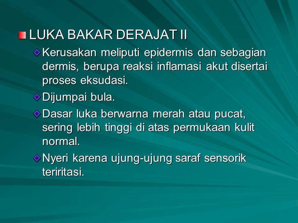 LUKA BAKAR DERAJAT II Kerusakan meliputi epidermis dan sebagian dermis, berupa reaksi inflamasi akut disertai proses eksudasi.