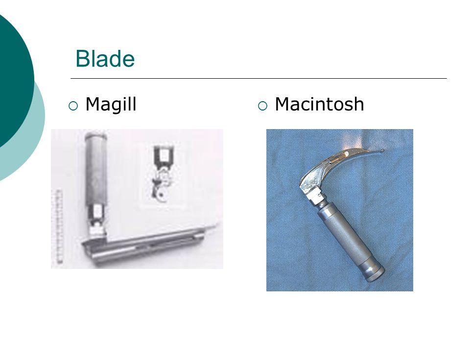 Blade Magill Macintosh