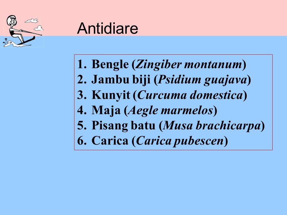 Antidiare Bengle (Zingiber montanum) Jambu biji (Psidium guajava)