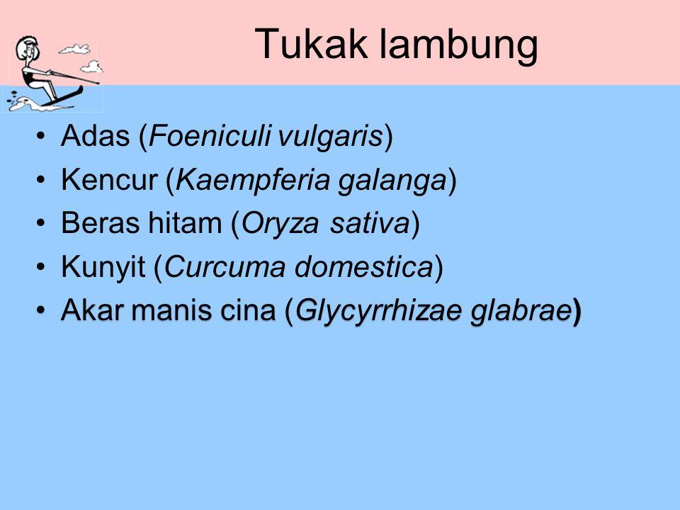 Tukak lambung Adas (Foeniculi vulgaris) Kencur (Kaempferia galanga)