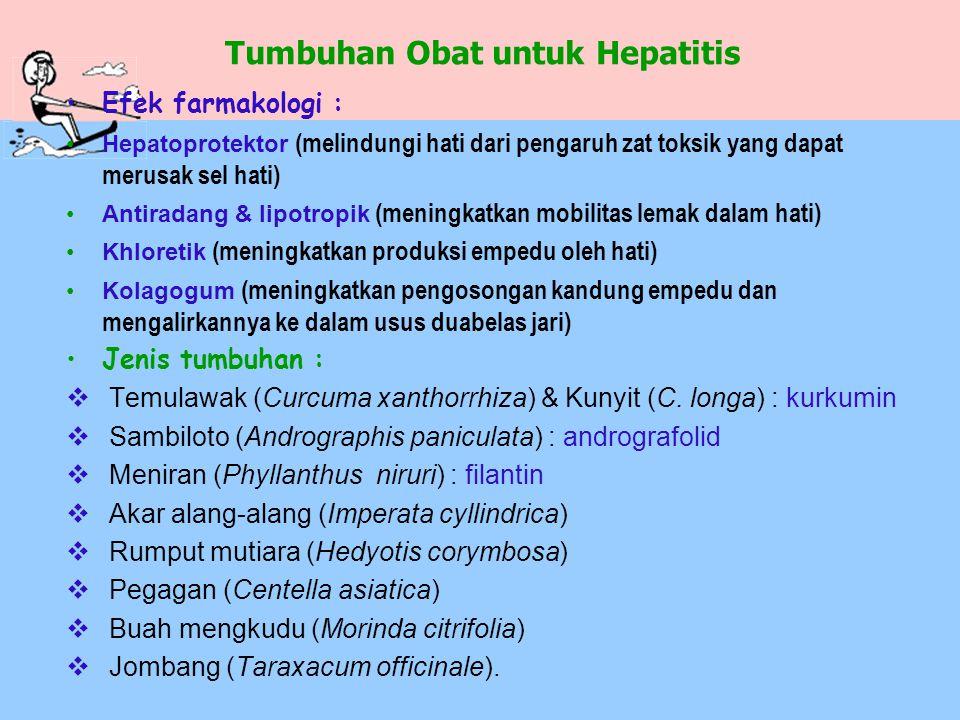 Tumbuhan Obat untuk Hepatitis