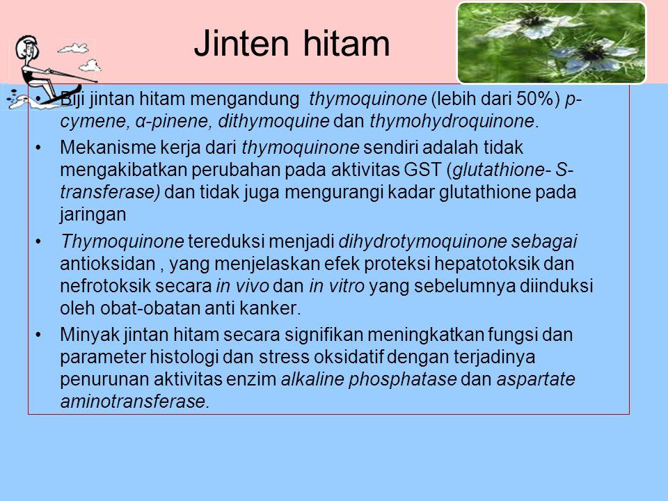 Jinten hitam Biji jintan hitam mengandung thymoquinone (lebih dari 50%) p-cymene, α-pinene, dithymoquine dan thymohydroquinone.