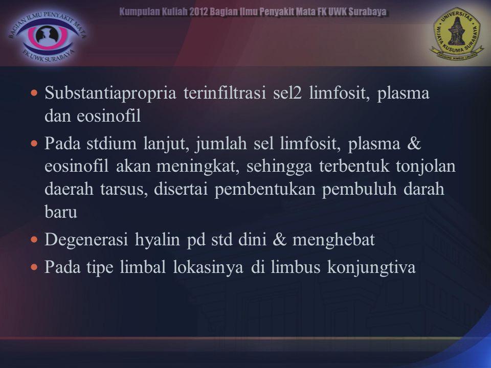 Substantiapropria terinfiltrasi sel2 limfosit, plasma dan eosinofil