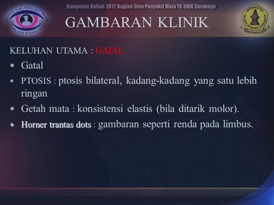 GAMBARAN KLINIK KELUHAN UTAMA : GATAL. Gatal. PTOSIS : ptosis bilateral, kadang-kadang yang satu lebih ringan.