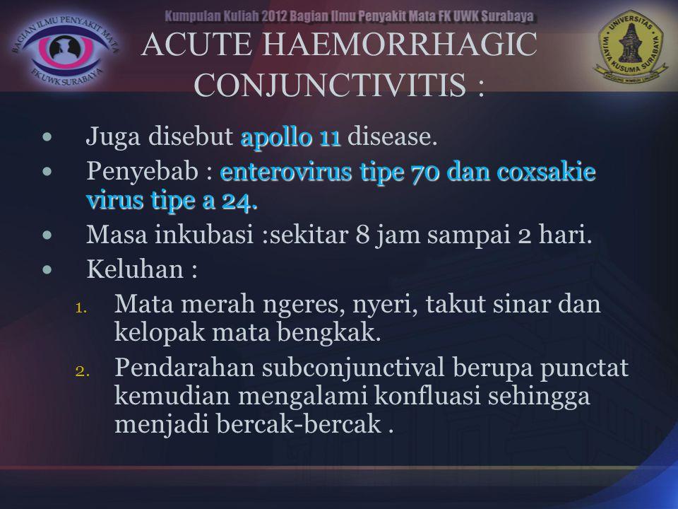 ACUTE HAEMORRHAGIC CONJUNCTIVITIS :