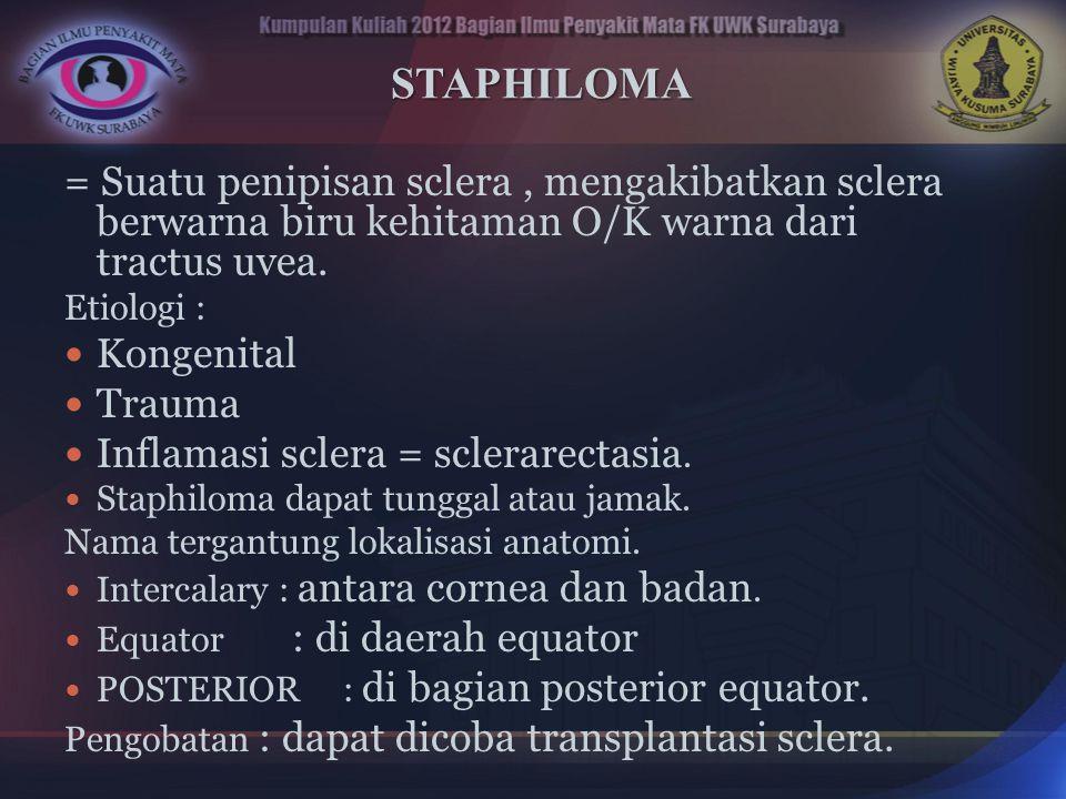 STAPHILOMA = Suatu penipisan sclera , mengakibatkan sclera berwarna biru kehitaman O/K warna dari tractus uvea.
