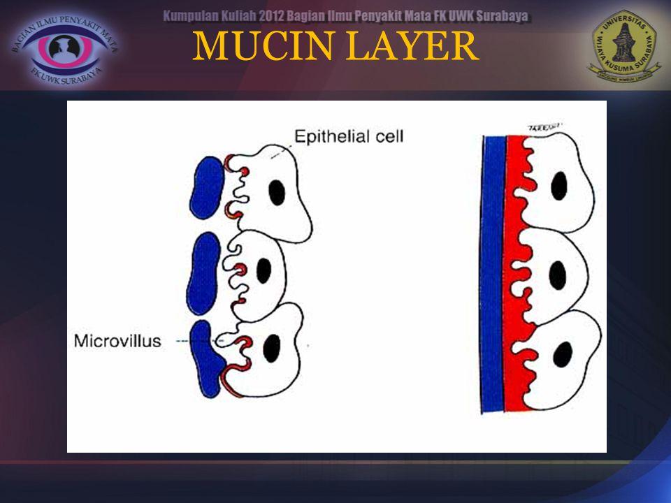 MUCIN LAYER