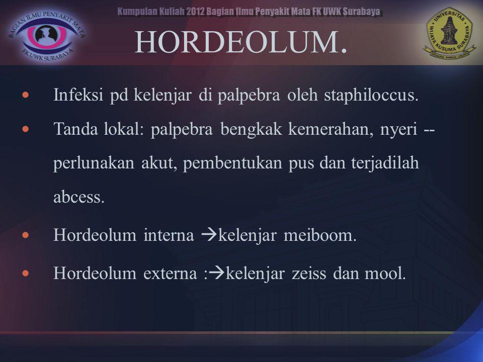 HORDEOLUM. Infeksi pd kelenjar di palpebra oleh staphiloccus.